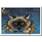 Carte postale Chat Cancer de Séverine Pineaux – Chats du Zodiaque