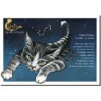 Carte postale Chat Scorpion de Séverine Pineaux – Chats du Zodiaque