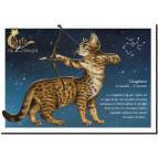 Carte postale Chat Chagittaire de Séverine Pineaux – Chats du Zodiaque