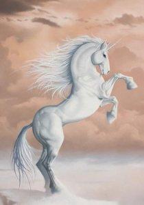 Licorne, carte postale de Sandrine Gestin
