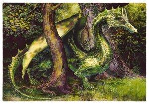 Carte postale Dragon Vert de Séverine Pineaux