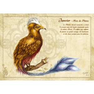 Carte postale Janvier - Mois du Phénix de Séverine Pineaux