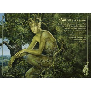 Carte postale Juin - Mois de la Dryade de Séverine Pineaux