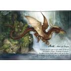 Août - Mois du dragon de Séverine Pineaux