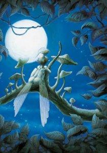 Rêverie à la Lune de Pascal Moguérou