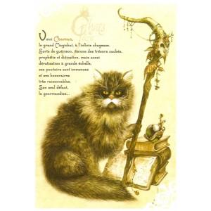 Carte postale Chaman de Séverine Pineaux - Chats de Féerie