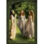 "Carte Postale ""Les Dames d'Avalon"" de la collection ""Dames de Brocéliande"" illustrée par Sandrine Gestin"