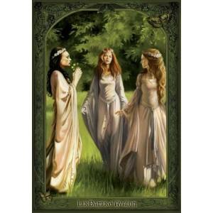 Les Dames d'Avalon de Sandrine Gestin - Dames de Brocéliande
