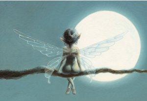 Clair de Lune de Pascal Moguérou