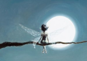 Clair de Lune, carte postale de Pascal Moguérou