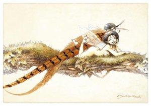 Plume de Faisan, carte postale de Pascal Moguérou
