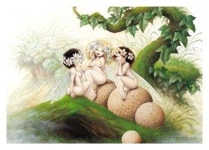 Commères, carte postale de Pascal Moguérou