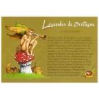 """Carte Postale """"Le kornikaned"""" illustré par Pascal Moguérou"""