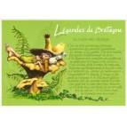 """Carte Postale """"Le lutin des champs"""" illustré par Pascal Moguérou"""