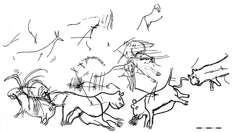 Diverticule des félins, gravures relevées par A. Glory, échelle = 25 cm (source : Wikipedia)