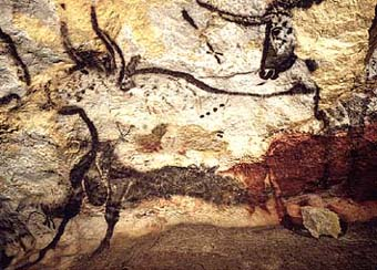 Aurochs (source : Wikipedia)
