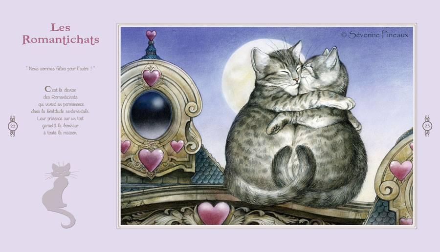 Les Romantichats tirés du nouveau livre sur les chats de Séverine Pineaux Des Sourires et des Chats
