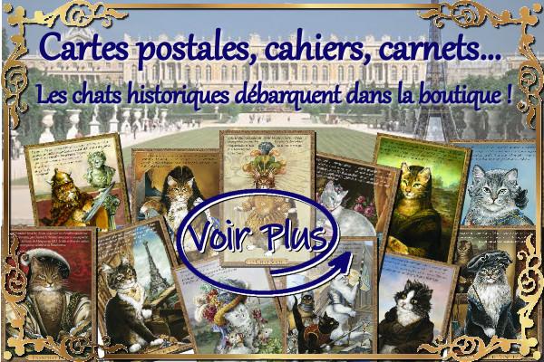 La collection de chats historiques de Séverine Pineaux