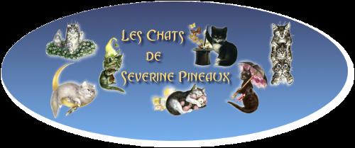 Rejoignez la communauté officielle Chats de Séverine Pineaux