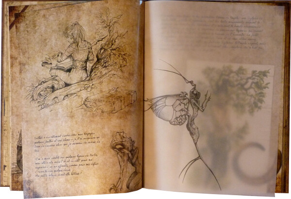 Ysambre, le Monde-Arbre un livre objet