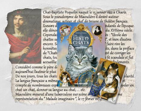 Chat-Baptiste Poquelin, un histochat inventé pour le Concours Histochats