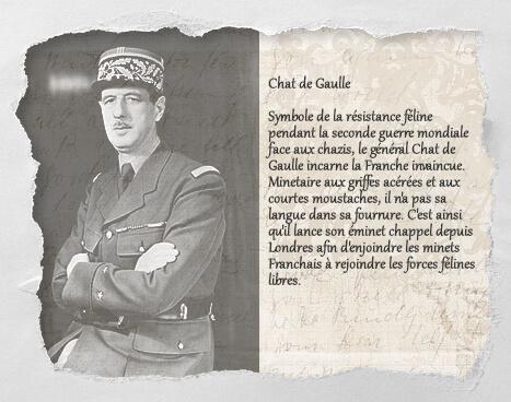 Chat de Gaulle, un histochat du concours Histochats de Séverine Pineaux