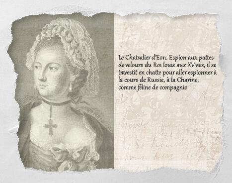 Chatvalier d'Eon, un histochat du concours Histochats de Séverine Pineaux